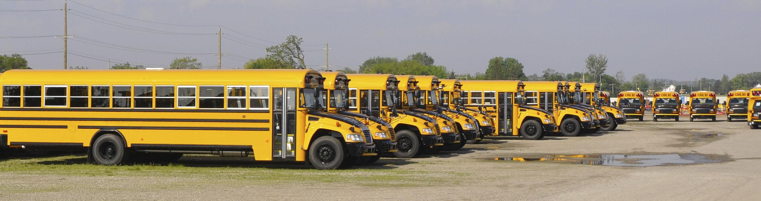 Transportation Management System Set Up