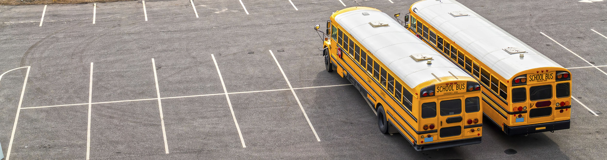 Bus Transportation Management Videos