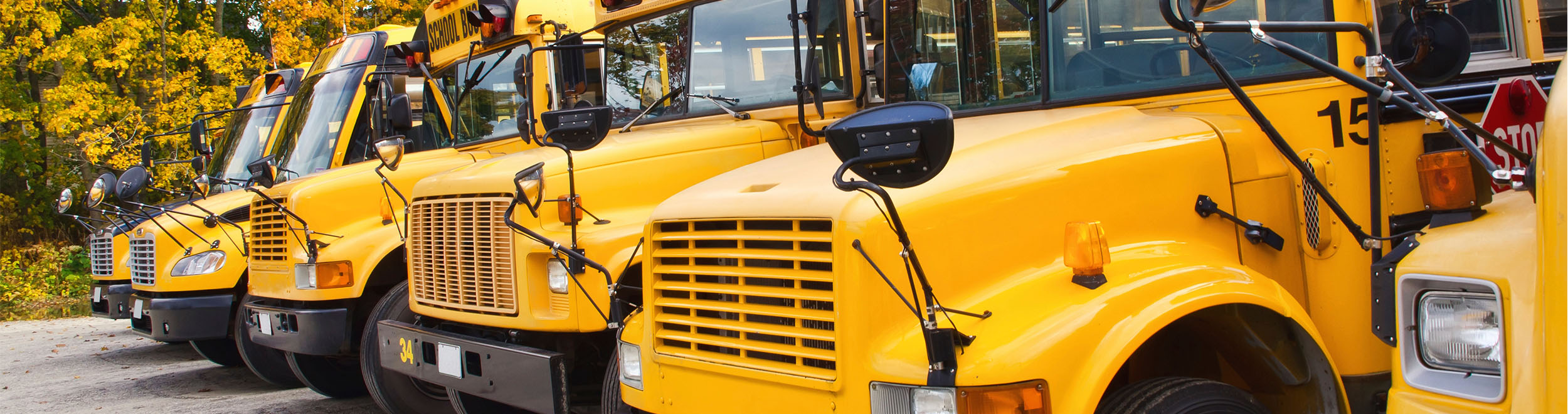 School Bus Routing Software Resources