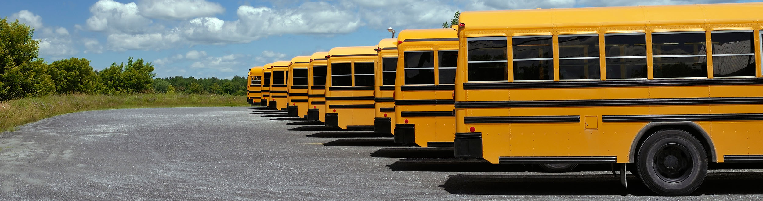 Transportation Management Solutions Support