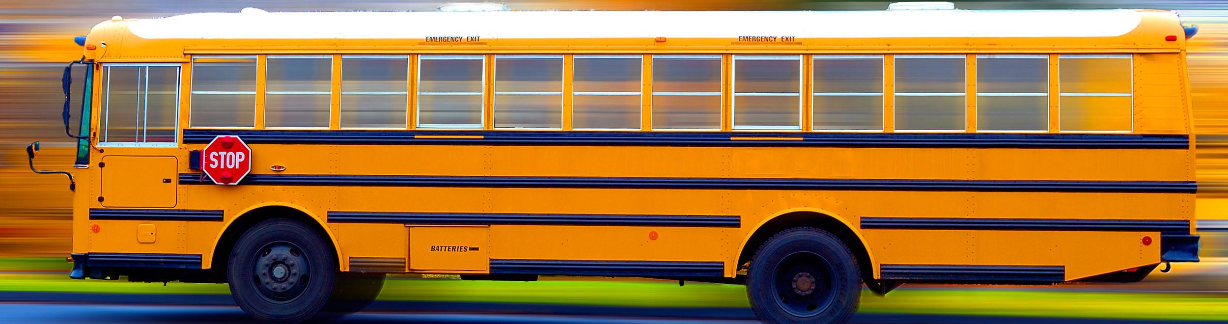 Transportation Management System Support
