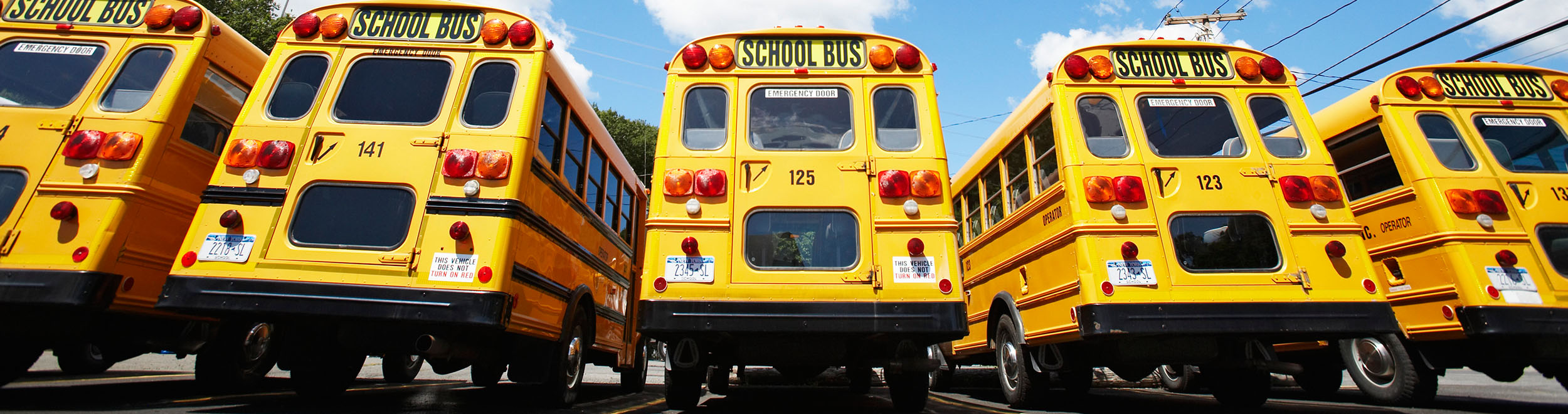 School Bus Routing Software Solution