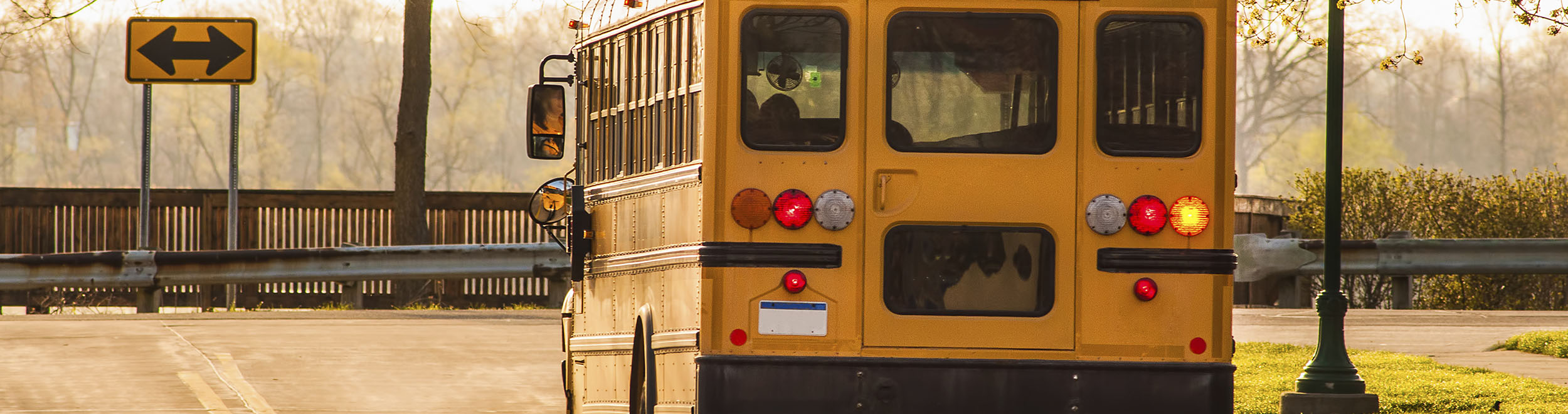School Bus Routing Software