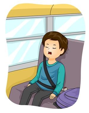 School Bus Lap Shoulder Belts