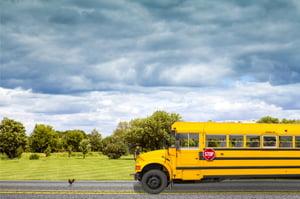 School Bus Transportation (1)