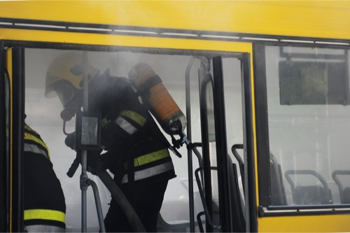 school bus driver-2.jpg