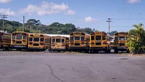used school buses